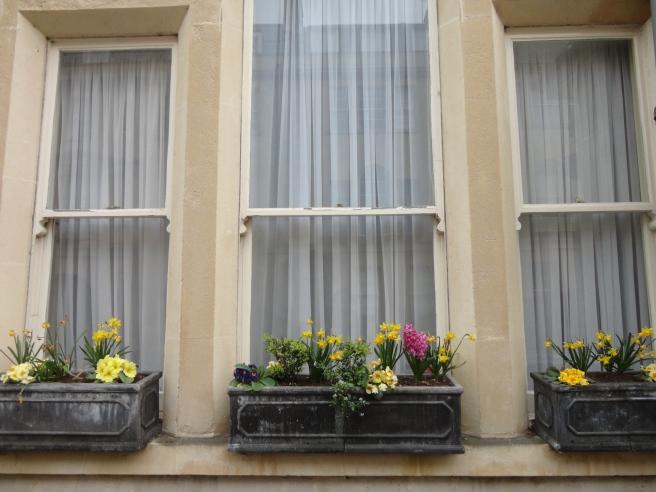 A lovely window box